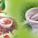 Top Ayurvedic Companies in Haridwar