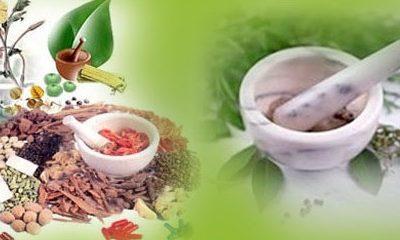 List of Ayurvedic Medicine Manufacturer in Haridwar