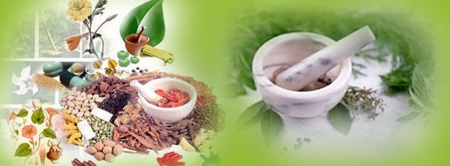 List of Ayurvedic Medicine Manufacturer in Haridwar