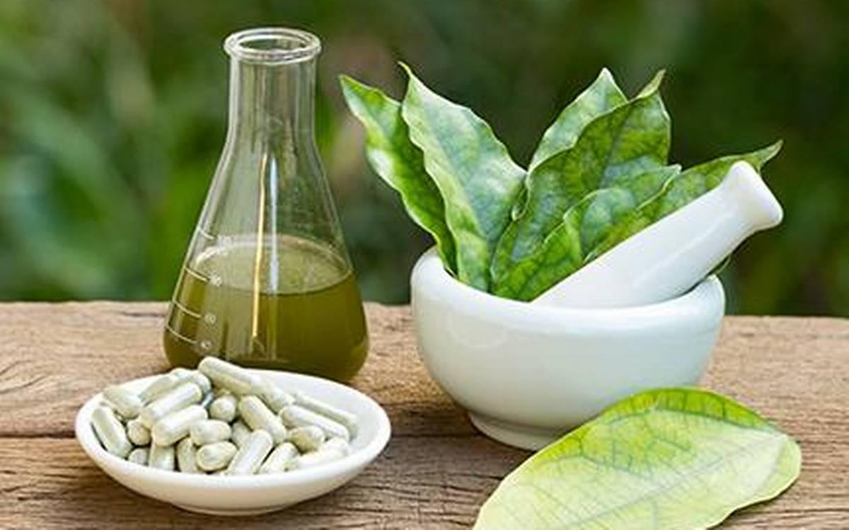 Ayurvedic Medicine Manufacturers in Bihar