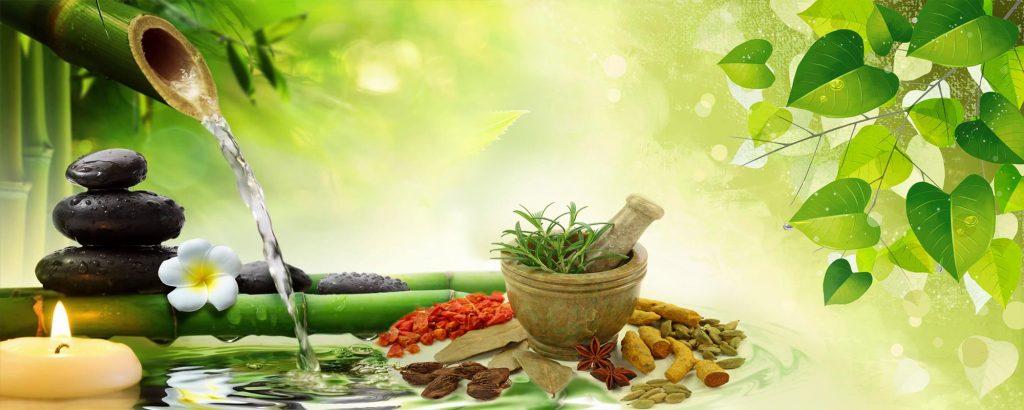 Ayurvedic Medicine Manufacturers in Telangana