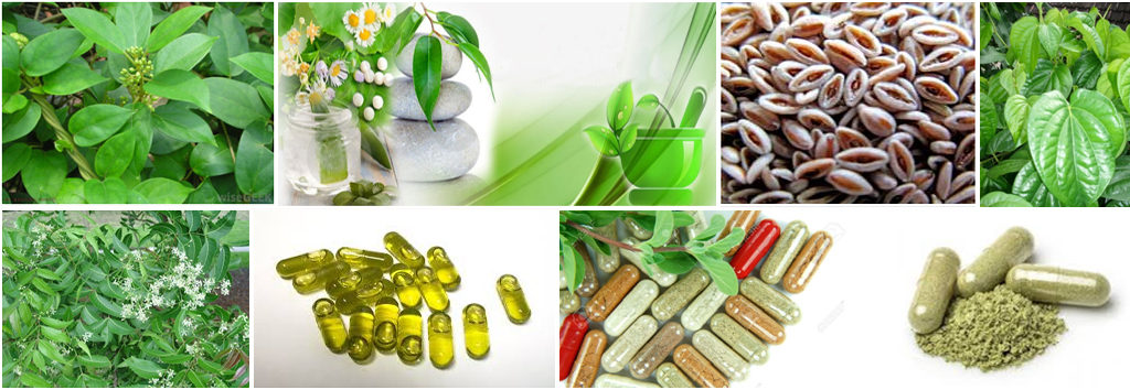Third Party Manufacturing of Ayurvedic Products in India