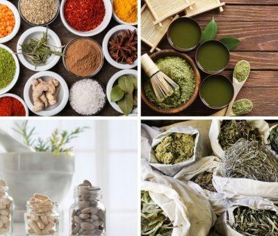 Ayurvedic Medicine Manufacturer in Ludhiana