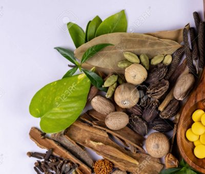 Ayurvedic Medicine Manufacturers in Jodhpur