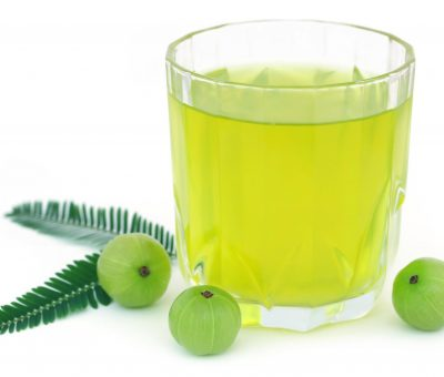 Amla Juice Manufacturers in India